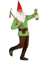 Groen kabouter kostuum voor volwassenen