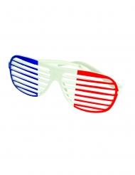 Gekleurde driekleurige Frankrijk bril