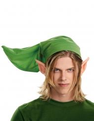 Link Legend of Zelda™ set voor volwassenen