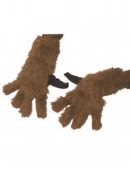 Infinity War™ Rocket Raccoon handschoenen voor volwassenen