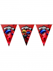 Ladybug™ vlaggenslinger voor verjaardag