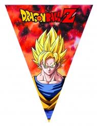 Dragon Ball Z™ verjaardagsslinger