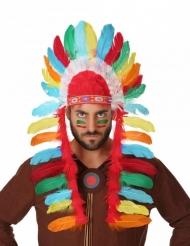 Gekleurde indianen hoofdtooi voor volwassenen
