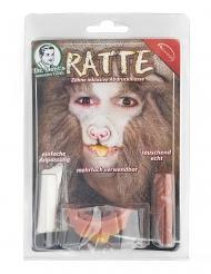 Rat tanden voor volwassenen