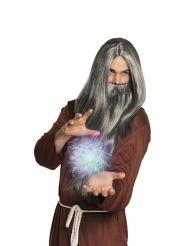 Lange grijze tovenaar baard en pruik voor mannen