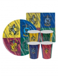 Harry Potter™ Zweinstein verjaardag set