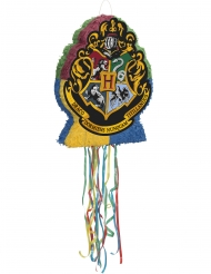 Harry Potter™ pinata