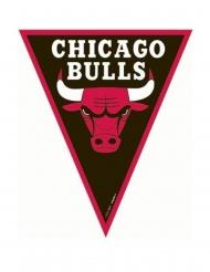 Chicago Bulls™ vlaggenslinger