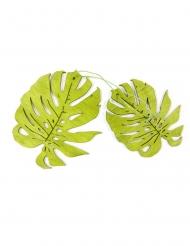2 groene houten tropische bladeren