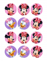 12 Minnie™ decoraties voor gebak