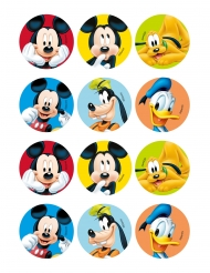 12 Mickey & Friends koek decoraties