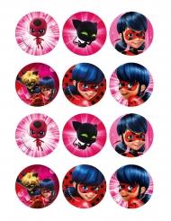 12 Ladybug™ suikerdecoraties