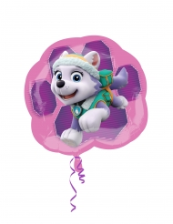 Aluminium Everest Paw Patrol™ ballon