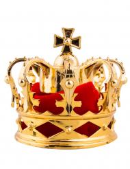 Goudkleurige mini kroon op haarclip