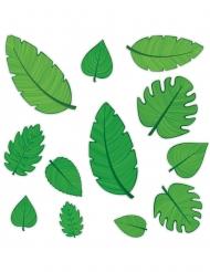 12 groene tropische bladeren cutouts