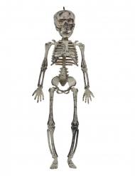 Grijs skelet hangdecoratie