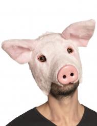 Pluche varken masker voor volwassenen