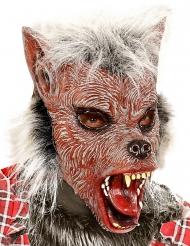 Weerwolf masker met haren voor kinderen