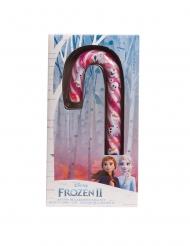 Frozen 2™ suikerstok
