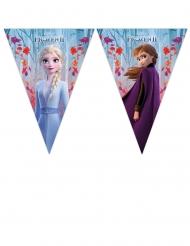 Frozen 2™ verjaardagsslinger