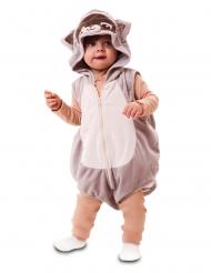 Wasbeer kostuum voor baby