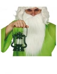 Groene lichtgevende lantaarn 17 cm