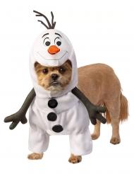 Frozen 2™ Olaf kostuum voor honden