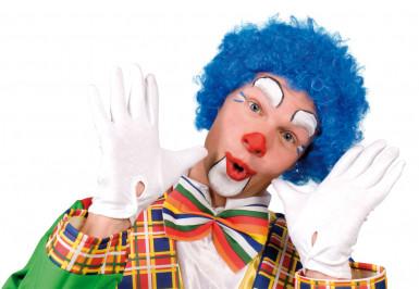 Blauwe afro clownspruik voor volwassenen