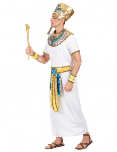 Egyptische Farao kostuum voor heren-1