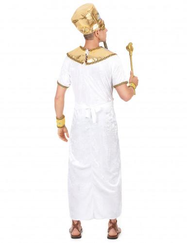 Egyptische Farao kostuum voor heren -2