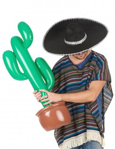 Opblaasbare cactus-1