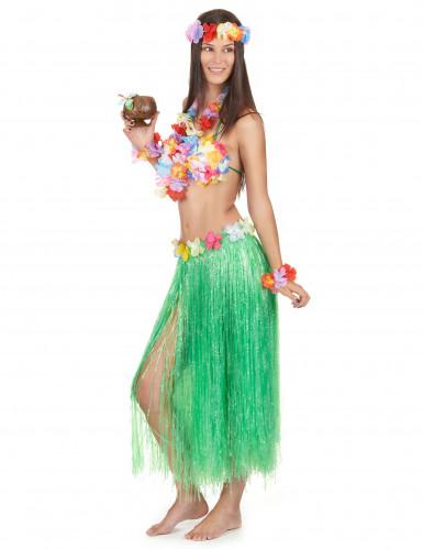Hawaïaanse accessoire set voor volwassenen-1