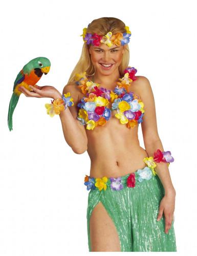 Rode en blauwe Hawaïaanse papegaai-1