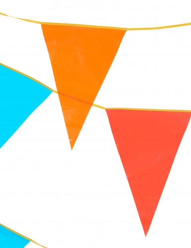 Slinger met veelkleurige reuzevlaggen 10 meter-1
