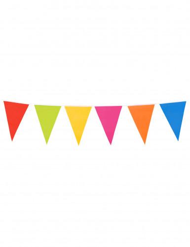 Slinger met veelkleurige reuzevlaggen 10 meter-2