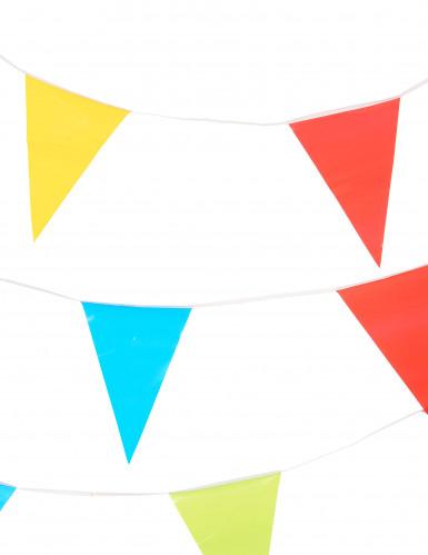 Veelkleurige vlaggenlijn slinger-1
