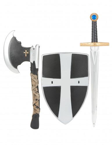 Schild zwaard en bijl van middeleeuwse ridder