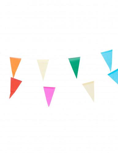 Veelkleurige papieren slinger