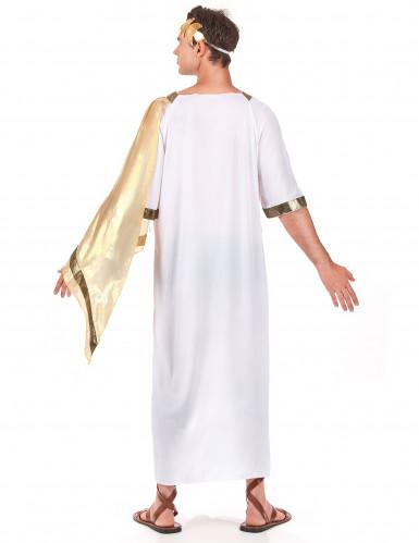 Romeinse keizer kostuum voor mannen -2