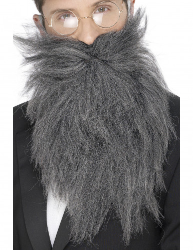 Lange grijze baard voor mannen