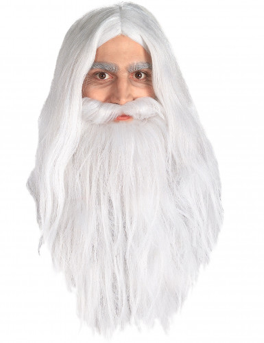 Gandalf Lord of the Rings™ pruik en baard