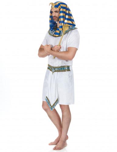 Egyptisch farao kostuum voor heren-1