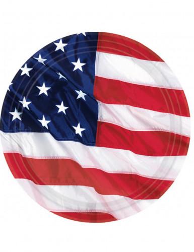 8 kartonnen borden Amerika