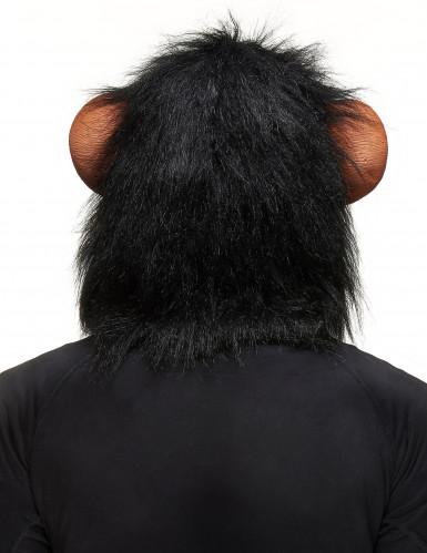 Apen masker voor volwassenen -1