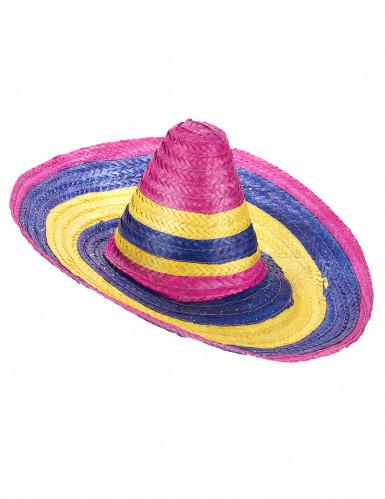 Sombrero multicolor voor volwassenen