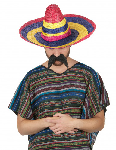 Multikleuren sombrero-1