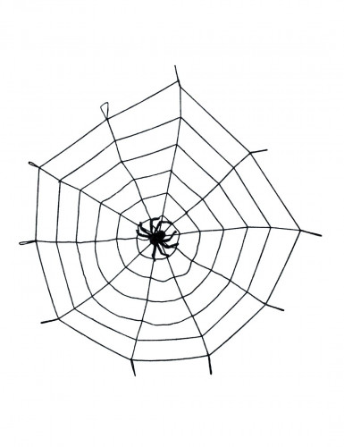 Zwart spinnenweb met spin