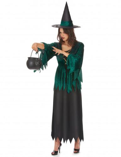 Groene heks kostuum voor vrouwen-1