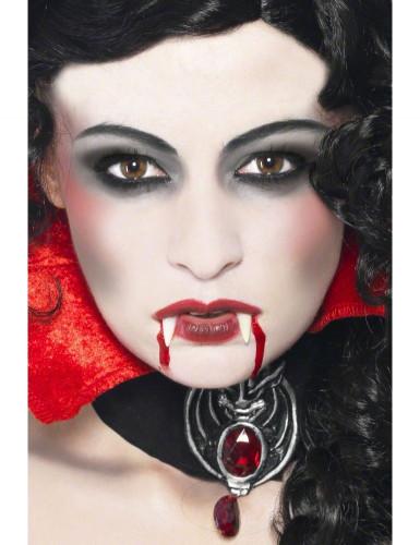 Halloween make up vampier kit voor volwassenen