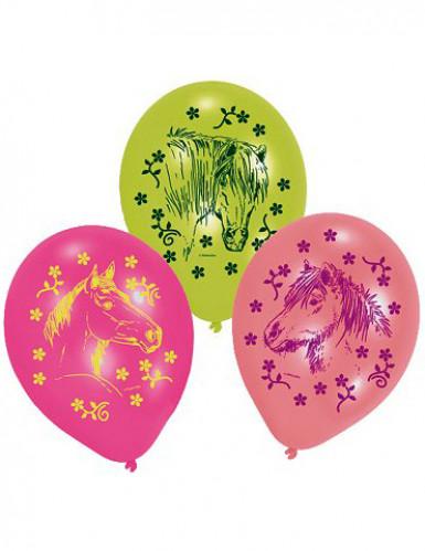 6 paarden ballonnen
